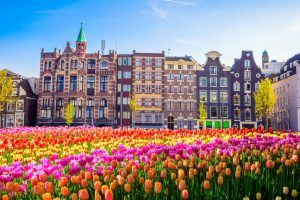Windykacja długów w Holandii – istotne aspekty